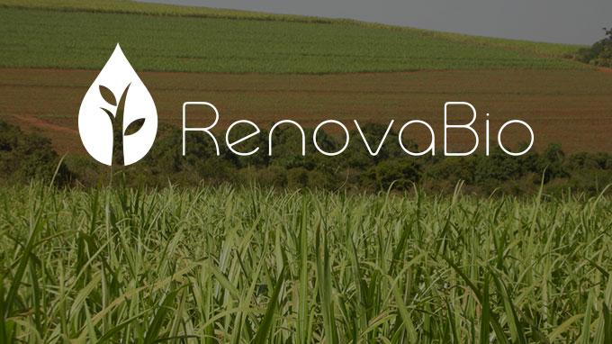 RenovaBio movimenta grandes grupos em busca da emissão de créditos ...